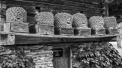 Alte Bienenkörbe - Old Beehives (Of Light & Lenses) Tags: beehives bienenkörbe farmheritage culturalheritage freilichtmuseum steiermark austria olympus mzuiko baskets mzuiko1825mm stübing openairmuseum blackandwhite bw