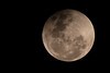 Super Moon, Blood Moon and Lunar Eclipse (Velachery Balu) Tags: supermoon bloodmoon lunareclipse celestialevent oncein150years chennai beach thiruvanmiyur
