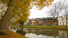 Autumn going Winter (HansPermana) Tags: utrecht nederland netherlands niederlande city cityscape canal kanal water reflection autumn herbst 2017 november eu europa europe