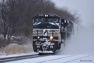 Stampeding Through The Snow