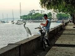 dois pescadores (lucia yunes) Tags: pescaria pescador urca muretadaurca garsa beach luciayunes motozplay