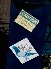 Caution - Low Flying Pigeons (Steve Taylor (Photography)) Tags: caution lowflyingpigeons forallthehaters ♥ heart kissmybirdseed pigeon bird pasteup wheatup wheatpaste