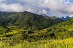 Hory, kopce, terasy (zcesty) Tags: vietnam25 krajina hory vietnam dosvěta laichâu vn