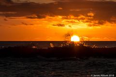 1 29 Poipu Beach 2018-01-29 083-LR (jamesabbott1963) Tags: canon70d kauaipoipu koloa hawaii unitedstates us