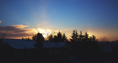 good morning, sundog (viewsfromthe519) Tags: morning dawn sunrise sun dog sundog halo rainbow refraction weather icecrystals atmosphere skyscape silhouette winter january coldsnap stthomas ontario canada golden yellow blue orange clouds nature