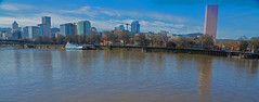 Warm January Day (dog97209) Tags: warm january day hit 60 outside me camera went for 5 mile walkportlands skyline willamette river