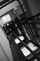 Ascension. (35mm) | Ilford Delta 400 Pro. (samuel.musungayi) Tags: 35mm 24x36 135 film analog pellicule pelicula negativo negative négatif scan monochrome mono noir et blanc black white photography photographie fotografia camera lense home candid life light samuel musungayi ilford delta 400 pro professional yashica carl zeiss planar contax flou