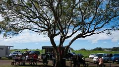 Waimea (11) (BoyUtot) Tags: waimea waimeavalley bigisland hawaii waimeafarmersmarket roadtrip panasonicgh1 lumix 100300mm ramesesmendoza travel nature landscape