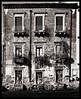 Dilapidation (albireo 2006) Tags: dilapidation facade catania sicilia sicily italia italy monochrome blackwhitephotos blackandwhite blackandwhitephotos blackwhite bw bn nine