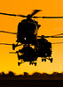 AAC Lynx AH9 Farewell Flight (Chris Gilligan) Tags: aac lynx helicopter ah9 farewell flypast flight valhalla middle wallop army british formation