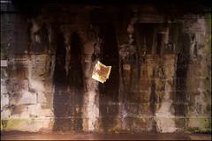 02 Paleosocial Paratechnoscience (onesecbeforethedub) Tags: vilem flusser onesecbeforetheend onesecbeforethedub vassilis galanos βασίλησ γαλανόσ art artistic psychedelic technical images imagination