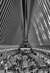 Inside The Oculus (HarrySchue) Tags: newyorkcity oculus blackwhite nikon d800e sigmalens architecture nyc