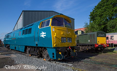 20170518-IMG_7803 (deltic21) Tags: severnvalley severn british brblue britishrail preservation preserved rail railway hydraulic western class canon maybach class52 d1062 clayton 17 bobo type 1 courier shed depot wizzo valley train track tracks trains sun sunny blue sky gala diesel classic heritage