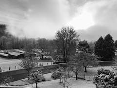 Novaggio (CANETTA Brunello) Tags: suisse ch neve ticino svizzera