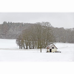 Shelter from the Storm (horstmall) Tags: hiver winter rutschenfelsen sanktjohann würtingen badurach schwäbischealb jurasouabe suabe swabianalps schnee snow neige schneefall snowfall frost kälte froide wald forest forèt hütte cabane hut shelter unterstand cabin horstmall
