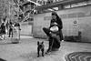 Parisian Life (michael.mu) Tags: paris leica m240 35mm leicasummicronm1235mmasph leicasummicron35mmf20asph streetphotography bw blackandwhite monochrome silverefexpro dog bulldog