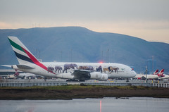 emirates a380 united for wildlife livery (pbo31) Tags: bayarea california color nikon d810 january winter 2018 boury pbo31 sanfranciscointernational sfo airport aviation flight airline plane millbrae shoreline travel emirates dubai a380 airbus departure taxi sanmateocounty terminal sky lowtide bay virginamerica gate