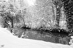 La Vaucouleurs DxOFP IlfordDelta100 XT2 DSCF1107 (mich53 - thank you for your comments and 5M view) Tags: arbres trees xf1655mmf28rlmwr xt2 france manteslaville îledefrance monochrome patrimoine blackwhite river rivière riverside saisons 4winter winter yvelines neige nature calme brouillard