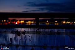 Locked on you by nights (remi ITZ) Tags: amour love locker cadenas parismylove parismonamour paris parismylovecom parisjetaime seine peniche boat river pont bridge louvre bestcapturesaoi