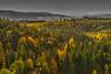 Bavarian Scenery (*Capture the Moment*) Tags: 2017 bavarianforest bayerischerwald bäume forest fotowalk landschaften natur nature sonne sonya7m2 sonya7mii sonya7mark2 sonya7ii sonyfe1635mmf4zaoss sonyilce7m2 sun trees wald wetter