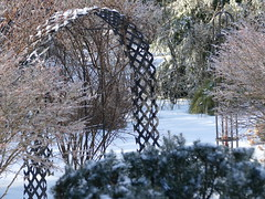 Winter garden (lovesdahlias 1) Tags: gardens snow ice nature winter newengland