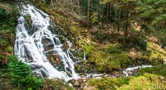 THE FALLS AT BALLINAFUNSHOGUE (Keith Ola Shoebridge (olamefein)) Tags: ballinafunshogue wicklow glenmalure ireland nature