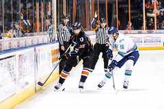 """Kansas City Mavericks vs. Florida Everblades, February 18, 2018, Silverstein Eye Centers Arena, Independence, Missouri.  Photo: © John Howe / Howe Creative Photography, all rights reserved 2018 • <a style=""""font-size:0.8em;"""" href=""""http://www.flickr.com/photos/134016632@N02/39676853314/"""" target=""""_blank"""">View on Flickr</a>"""