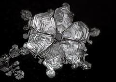 4jan18p (peterobrien186) Tags: snow snowflake snowcrystal ice winter plate hexagon macro nature