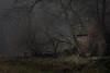 Januarnebel (Michael Bliefert) Tags: ahausen ahausermühle deutschland gebäude landkreisrotenburg mühle niedersachsen wassermühle