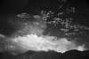 reflection (gurpreet_singh.) Tags: nd white river leaves srinagar india jk