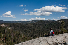 Summer in Sequoia (njaaames) Tags: sequoia sequoianationalpark sky clouds trees california sierranevada