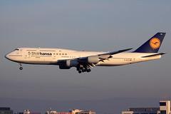 Lufthansa  Boeing 747-830 D-ABYM (widebodies) Tags: frankfurt main fra eddf widebody widebodies plane aircraft flughafen airport flugzeug flugzeugbilder lufthansa boeing 747830 dabym 5 starhansa