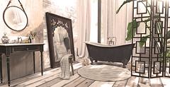 Refraction (..::Kαŧєriηα ღ ℙєŧrøvα::..) Tags: theplastik shinyshabby applefall dustbunny soy shine mirror decor bathroom scarletcreative