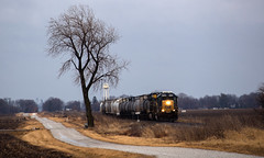 Lone Tree and Train (Jackson Vandeventer) Tags: csx gp60 emdgp60 csxt6898 j713 local burrowsville illinois il hammond la place laplace decatursubdivision csxt decatur westbound emd railroad railfanning railfan railroads rail rails railway rural train tracks track trains outdoor photography power locomotive horn freight manifest mixedfreight