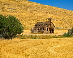 Abandoned Schoolhouse and Wheat Field 3443 B (jim.choate59) Tags: abandoned schoolhouse wheatfield wheatstubble decay ruraldecay wascocountyoregon dufuroregon jchoate oregon landscape harvest summer golden rural 8mileschoolhouse japanesehollowschoolhouse on1pics d610 eightmileschoolhouse