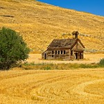 Abandoned Schoolhouse and Wheat field 3443 B thumbnail