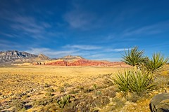 Red Rock Canyon Nevada 5879 C (jim.choate59) Tags: nevada jchoate on1pics landscape desert scenic d610 redrockcanyon