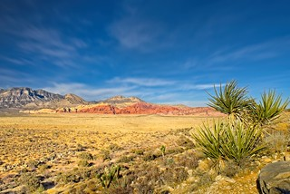 Red Rock Canyon Nevada 5879 C