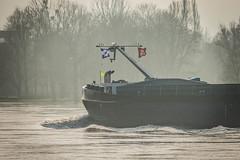 Rheinschiffer 5 (benimar66) Tags: rhein schiffe wasser