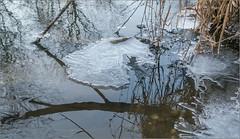 Tauwetter / It thaws (ludwigrudolf232) Tags: eis fluss spiegelung
