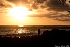 1 29 Poipu Beach 2018-01-29 036-LR (jamesabbott1963) Tags: canon70d kauaipoipu koloa hawaii unitedstates us