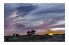 Sunset (champollion-10) Tags: landscapes trees clouds nature colors sunset nubes puestadesol sky cielo beautiful nwn ngc