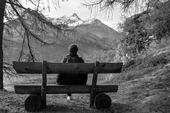 Sosta al Lago di Sils (giorgiorodano46) Tags: engadina lago sosta leila lake mountain svizzera schweiz suisse switzerland graubünden grison grigioni landscape sils hiking walking bw blackwhite ottobre2017 october 2017 giorgiorodano nikon silsersee