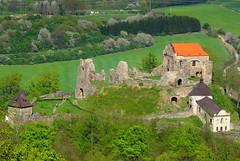 Potštejn castle (ZdenHer) Tags: castle potštejn hrad landscape tree