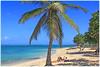 Plage de Guadeloupe  L'autre Bord  au MOULE© (philippedaniele) Tags: plage mercaraïbe guadeloupe grandeterre sable