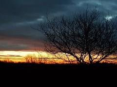 The morning sky (madmax557) Tags: uk eastanglia earlymorning sunrise peterborough england greatbritain skys sky cambridgeshire