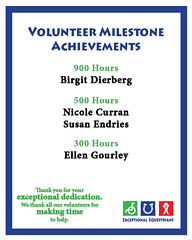 Volunteer Milestones 1.2018 300-900