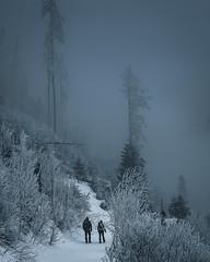 Into the dark (fedorcorobert) Tags: dark moody foto photo nikon tatry hightatras landscape travel nature adventure awesome winter photography follow