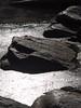 Molten lake (Distraction Limited) Tags: sabinocanyonrecreationarea sabinocanyon coronadonationalforest santacatalinamountains catalinamountains catalinas nature tucson arizona sabinocanyon20180131 algae sabinocreek reflections earthnaturelife