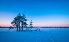 #realwinter (juhwie.foto - PROJECT: LEIDENSCHAFT-LICH-T) Tags: finnland finland finlandia scandinavia landscape landscapephotography trees sunset blue bluehour snow winter pentax pentaxart ricohimaging k1 1530 nature lake ngc